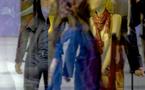 NOUVELLE EXPOSITION D'ADRIENNE ARTH du 14 DECEMBRE 2010 au 14 JANVIER  2011